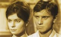 Starci na chmelu (1964) online ke shlédnutí